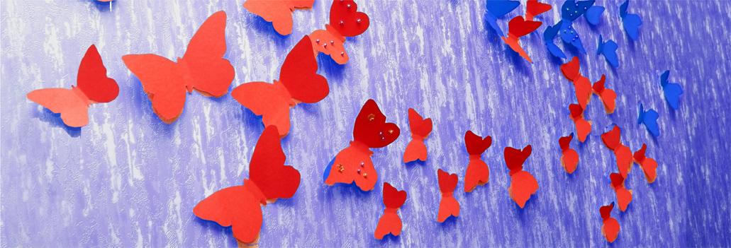 butterflys2