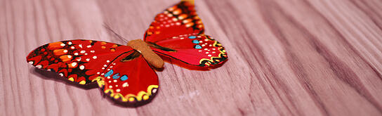 butterfly_game_blog